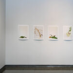 NPU Art Faculty exhibition – pano_1